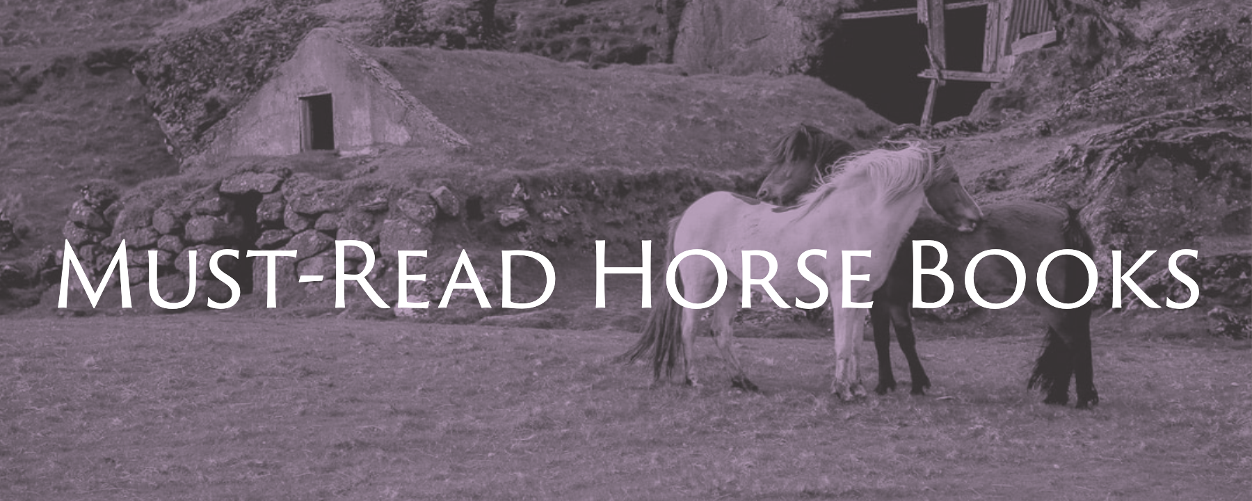 Must read horse books