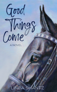 Good Things Come by Linda Shantz