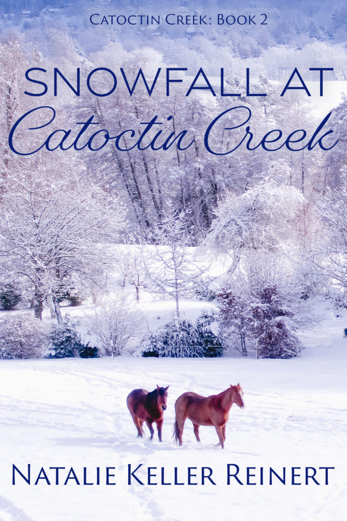 Snowfall at Catoctin Creek